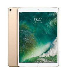 10.5-inch iPad Air Wi-Fi + Cellular 256GB - Gold